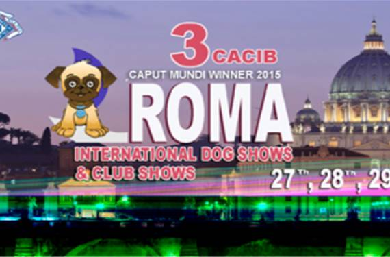 International Dog Show ROMA 2015